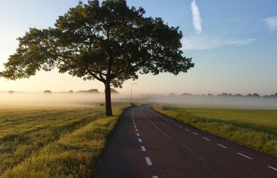route embrumée